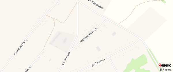 Молодежная улица на карте села Леньки с номерами домов