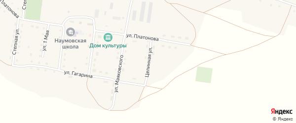 Целинная улица на карте села Наумовки с номерами домов