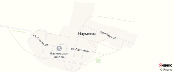 Карта села Наумовки в Алтайском крае с улицами и номерами домов