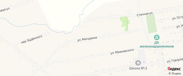 Улица Мичурина на карте села Леньки с номерами домов
