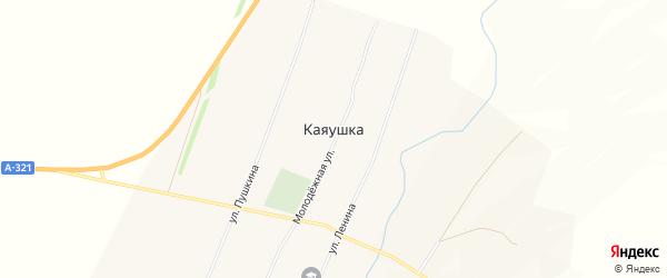Карта села Каяушки в Алтайском крае с улицами и номерами домов