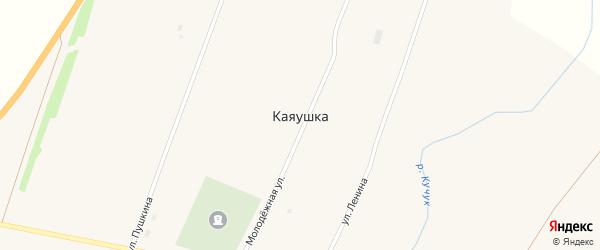 Молодёжная улица на карте села Каяушки с номерами домов