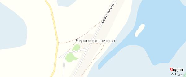 Центральная улица на карте села Чернокоровниково с номерами домов