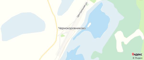 Карта села Чернокоровниково в Алтайском крае с улицами и номерами домов
