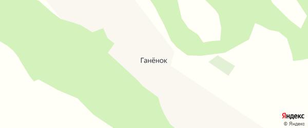 Центральная улица на карте поселка Ганенка с номерами домов