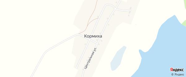 Центральная улица на карте села Кормихи с номерами домов