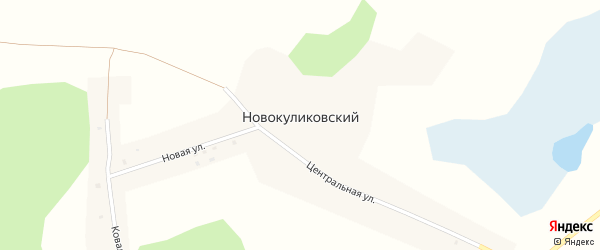 Центральная улица на карте Новокуликовского поселка с номерами домов