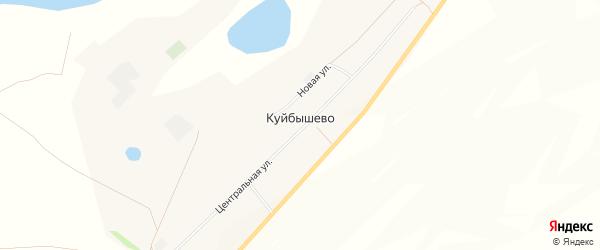 Карта села Куйбышево в Алтайском крае с улицами и номерами домов