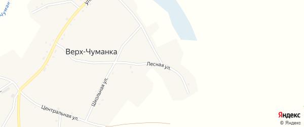Лесная улица на карте села Верха-Чуманки с номерами домов