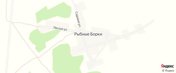 Лесная улица на карте поселка Рыбные Борки с номерами домов