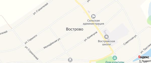 Улица Кривчуна на карте села Вострово с номерами домов