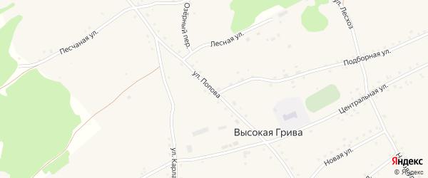 Улица Попова на карте села Высокой Гривы с номерами домов