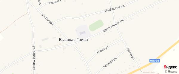 Центральная улица на карте села Высокой Гривы с номерами домов