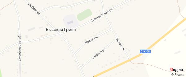 Новая улица на карте села Высокой Гривы с номерами домов