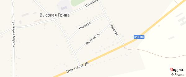 Зелёная улица на карте села Высокой Гривы с номерами домов