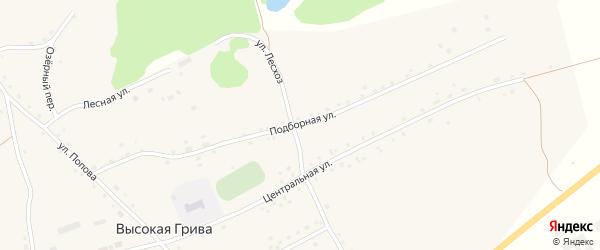 Подборная улица на карте села Высокой Гривы с номерами домов