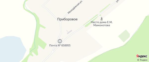 Улица Мамонтова на карте Приборового села с номерами домов