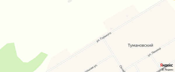 Молодёжная улица на карте Тумановского поселка с номерами домов
