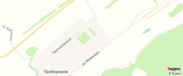 Карта Приборового села в Алтайском крае с улицами и номерами домов