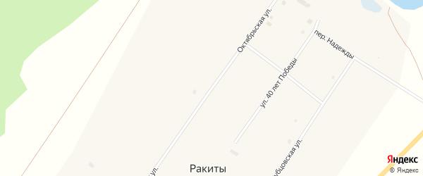 Октябрьская улица на карте села Ракиты с номерами домов