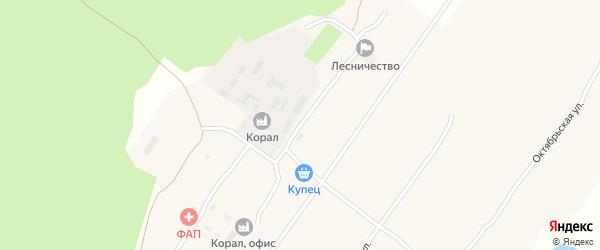 Центральная улица на карте села Ракиты с номерами домов