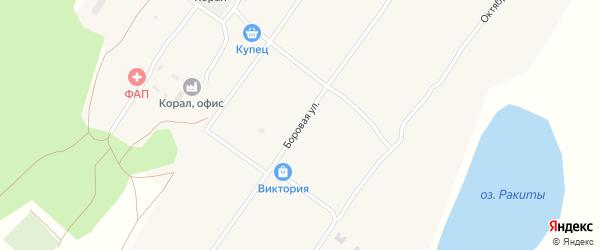 Боровая улица на карте села Ракиты с номерами домов