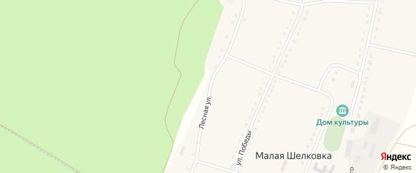 Лесная улица на карте села Малой Шелковки с номерами домов