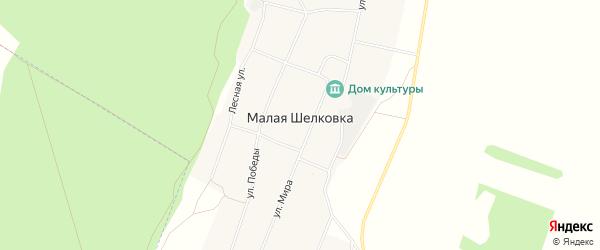 Карта села Малой Шелковки в Алтайском крае с улицами и номерами домов