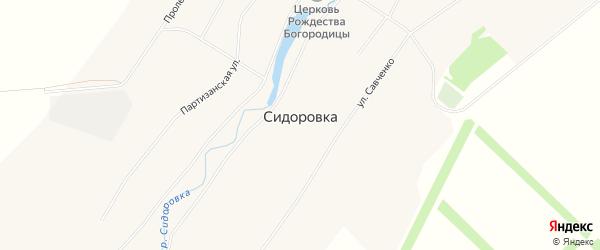 Карта села Сидоровка в Алтайском крае с улицами и номерами домов