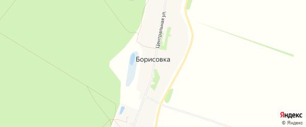 Карта села Борисовки в Алтайском крае с улицами и номерами домов