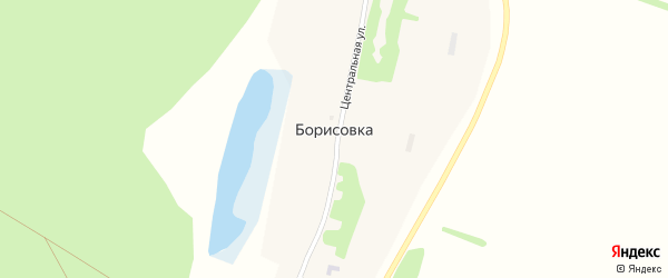 Лесная улица на карте села Борисовки с номерами домов