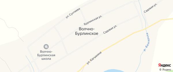 Карта Волчна-Бурлинского села в Алтайском крае с улицами и номерами домов