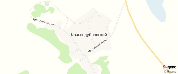 Карта Краснодубровского поселка в Алтайском крае с улицами и номерами домов