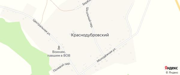 Центральная улица на карте Краснодубровского поселка с номерами домов