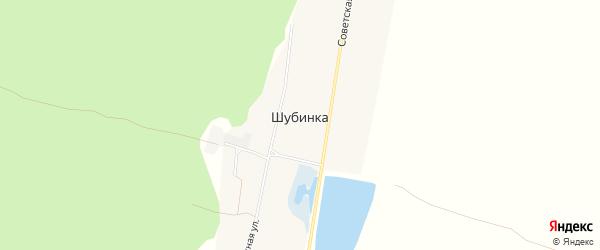 Карта села Шубинки в Алтайском крае с улицами и номерами домов