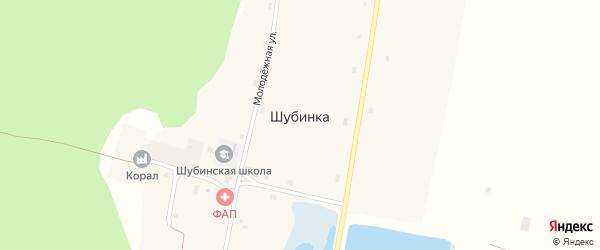 Молодежная улица на карте села Шубинки с номерами домов