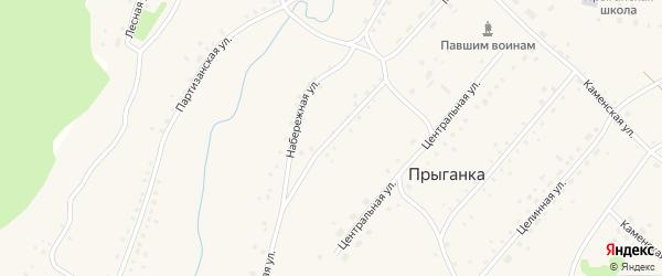 Клубная улица на карте села Прыганки с номерами домов