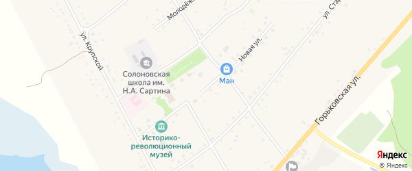 Новая улица на карте села Солоновки с номерами домов