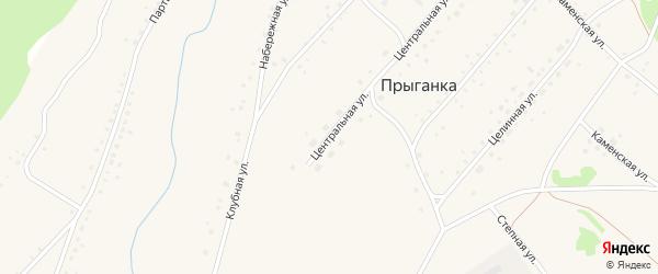 Центральная улица на карте села Прыганки с номерами домов