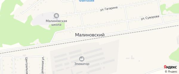 Центральная улица на карте Малиновского поселка с номерами домов