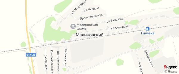 Карта Малиновского поселка в Алтайском крае с улицами и номерами домов