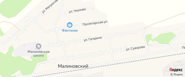 Улица Гагарина на карте Малиновского поселка с номерами домов
