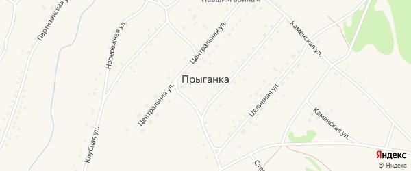 Партизанская улица на карте села Прыганки с номерами домов