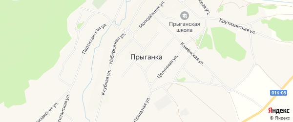 Карта села Прыганки в Алтайском крае с улицами и номерами домов