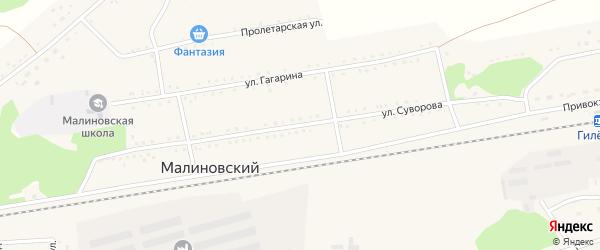 Улица Суворова на карте Малиновского поселка с номерами домов
