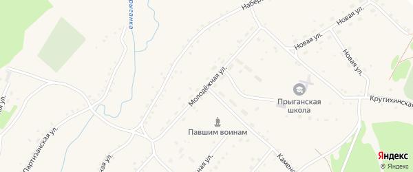 Молодежная улица на карте села Прыганки с номерами домов