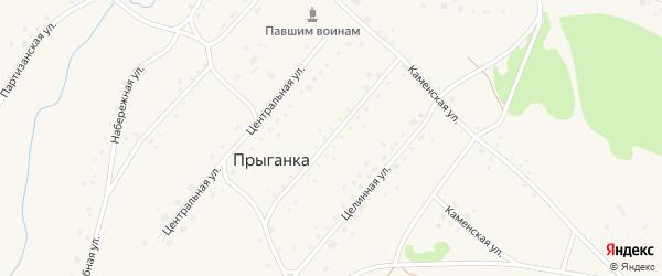 Комсомольская улица на карте села Прыганки с номерами домов