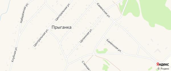 Целинная улица на карте села Прыганки с номерами домов