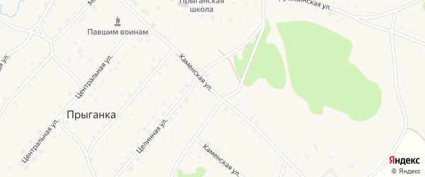Каменская улица на карте села Прыганки с номерами домов