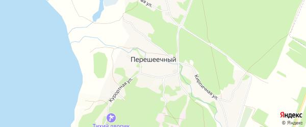 Карта Перешеечного поселка в Алтайском крае с улицами и номерами домов
